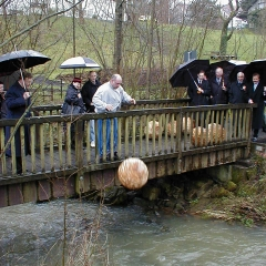 Am Bocksbach 2001