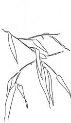 Bambusblätter 3